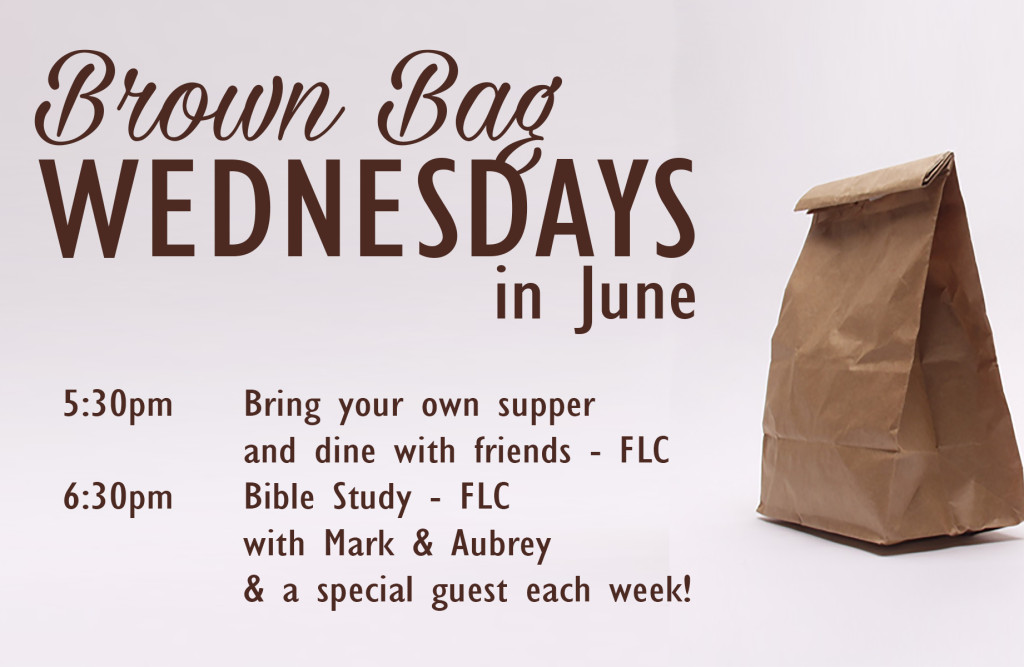 Brown Bag Bible Study web
